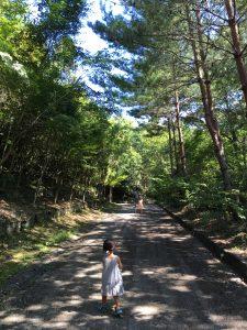 自然の遊歩道