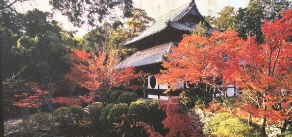 宝福寺紅葉2