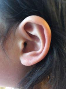 うめ子の耳