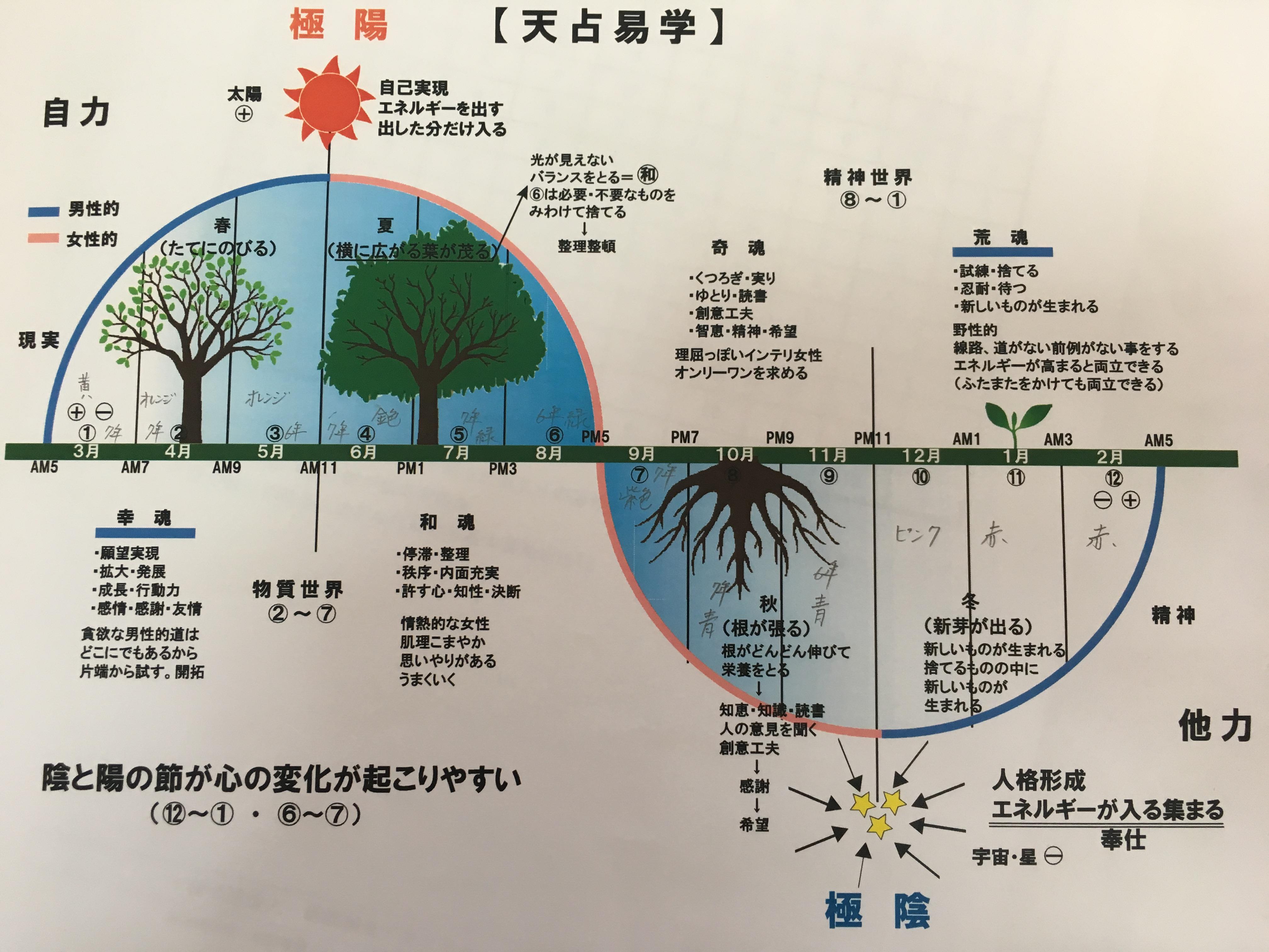 天占易学図