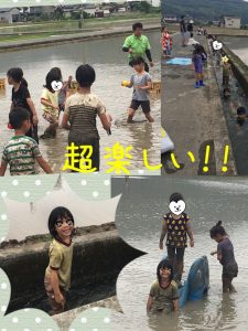 泥んこフェスティバルの様子
