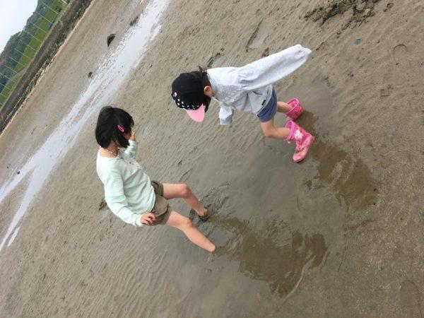 岡山県玉島干潟