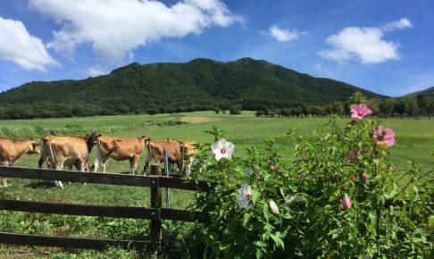 蒜山ジャージーランド