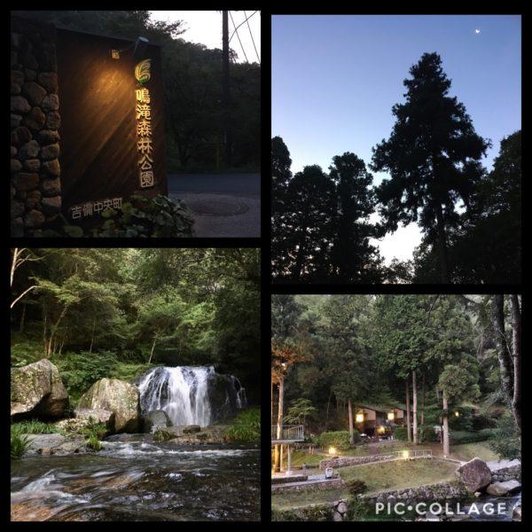 朝の鳴滝森林公園キャンプ場